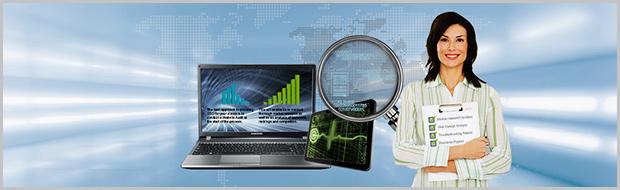 web-audit